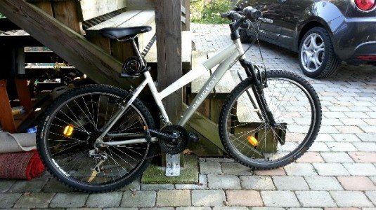 Amandas_cykel