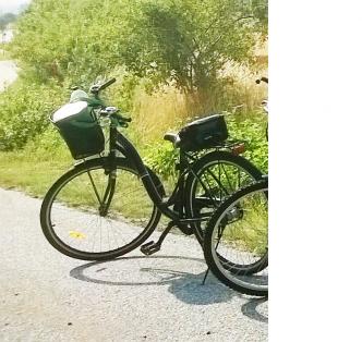 jennifer-bicycle-2