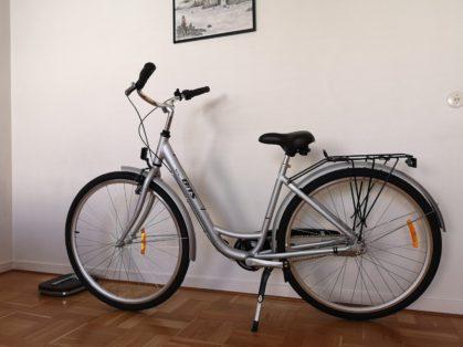 Stulen BITS Classic Laholm Cykelstöld