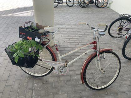 Cykelstöld Monark Sollentuna Stulen