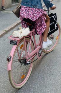 Cykelstöld Kronan Damcykel Stulen