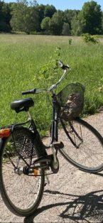 Cykelstöld Marvil Uppsala Stulen